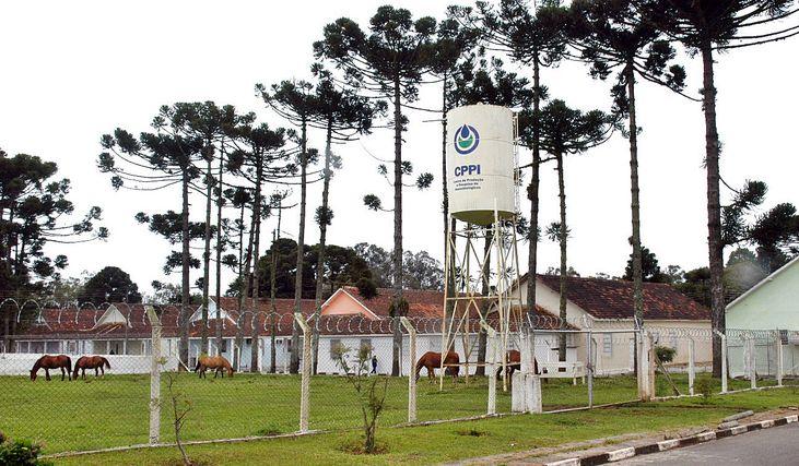 Centro de Produção e Pesquisa de Imunobiológicos