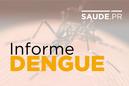 Incidência de casos aponta situação de alerta para epidemia de dengue no Paraná